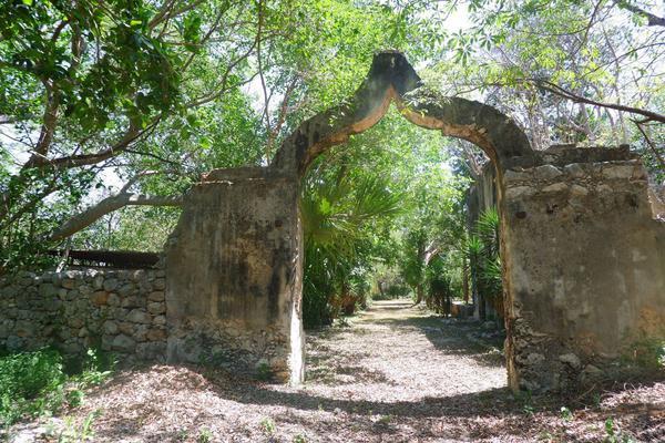 Foto de rancho en venta en  , hacienda mulsay, mérida, yucatán, 19819415 No. 06
