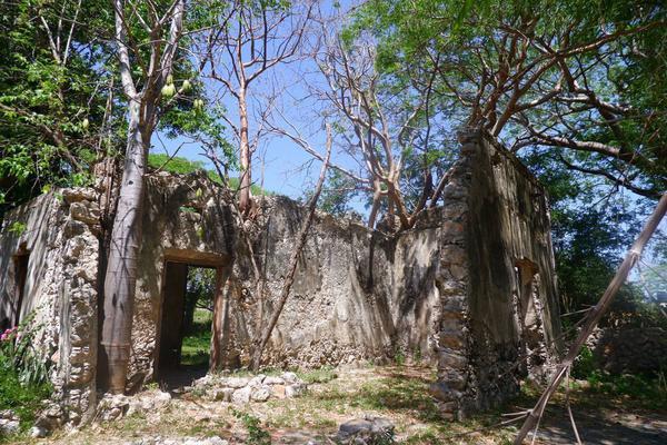 Foto de rancho en venta en  , hacienda mulsay, mérida, yucatán, 19819415 No. 13