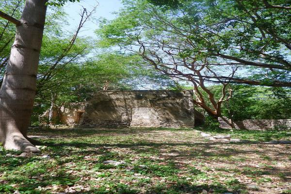 Foto de rancho en venta en  , hacienda mulsay, mérida, yucatán, 19819415 No. 14