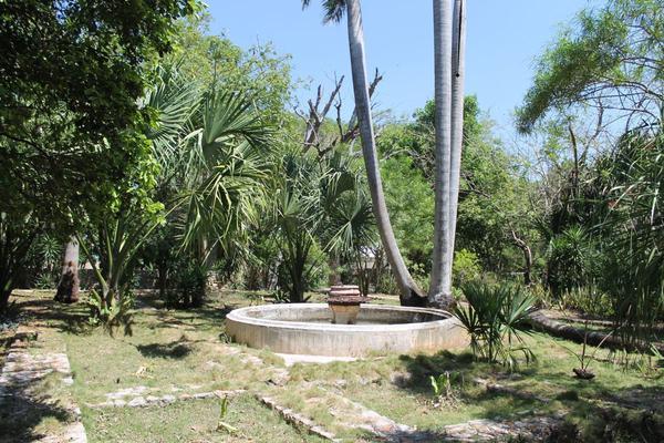 Foto de rancho en venta en  , hacienda mulsay, mérida, yucatán, 19819415 No. 16