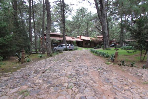 Foto de terreno habitacional en venta en hacienda san francisco , tapalpa, tapalpa, jalisco, 10309920 No. 05