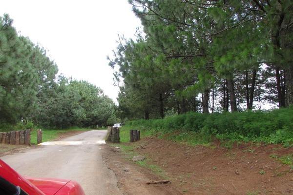 Foto de terreno habitacional en venta en hacienda san francisco , tapalpa, tapalpa, jalisco, 10309920 No. 09