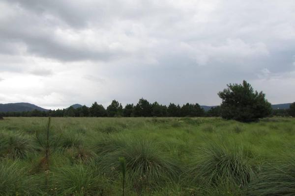 Foto de terreno habitacional en venta en hacienda san francisco , tapalpa, tapalpa, jalisco, 10309920 No. 10