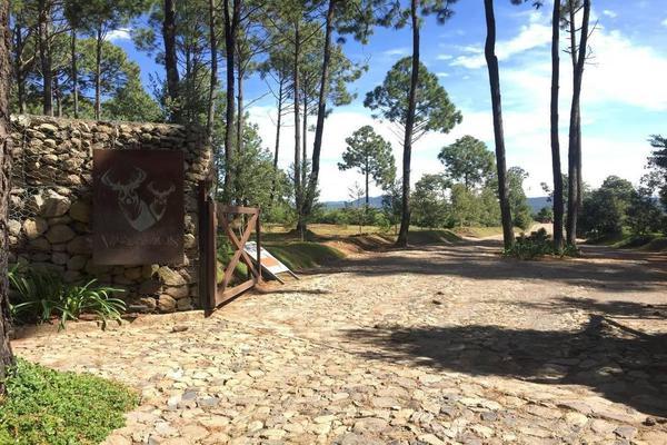 Foto de terreno habitacional en venta en hacienda san francisco , tapalpa, tapalpa, jalisco, 10309920 No. 24
