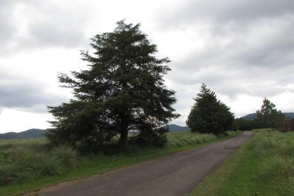 Foto de terreno habitacional en venta en hacienda san francisco , tapalpa, tapalpa, jalisco, 10309920 No. 25