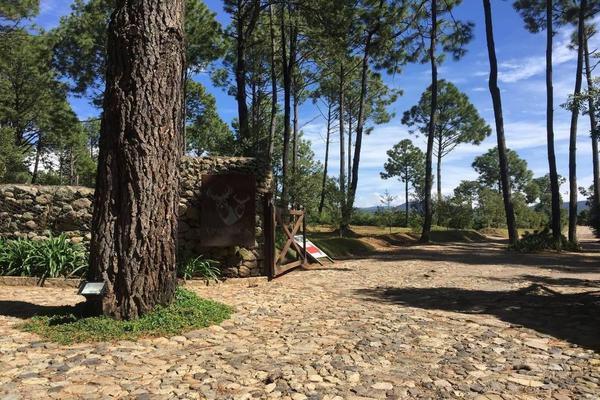 Foto de terreno habitacional en venta en hacienda san francisco , tapalpa, tapalpa, jalisco, 10309920 No. 27