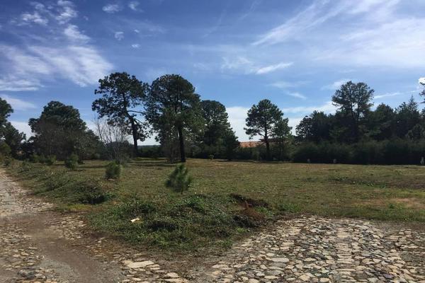 Foto de terreno habitacional en venta en hacienda san francisco , tapalpa, tapalpa, jalisco, 10309920 No. 28