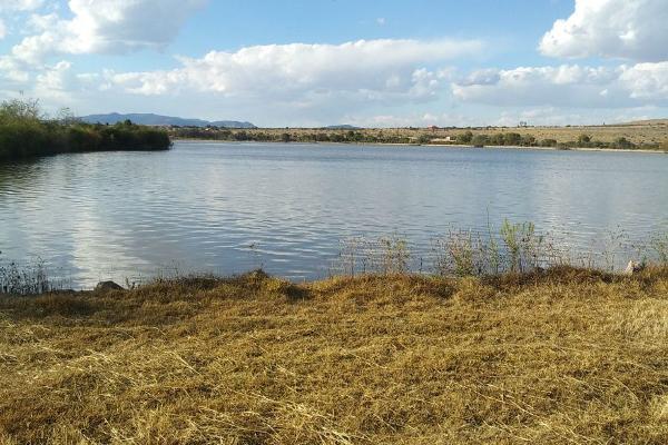 Foto de rancho en venta en  , hacienda san miguel, san felipe, guanajuato, 6184824 No. 03