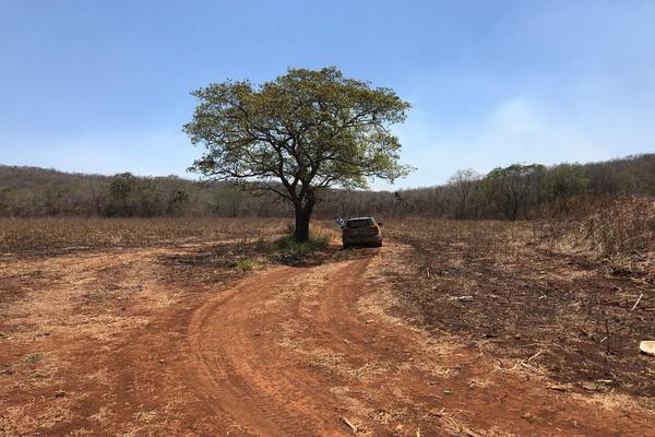 Foto de rancho en venta en  , hecelchakan, hecelchakán, campeche, 7513382 No. 07