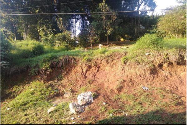 Foto de terreno habitacional en venta en hernández a, coatepec centro, coatepec, veracruz de ignacio de la llave, 0 No. 01