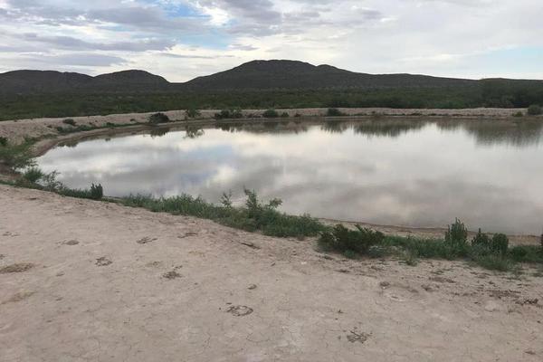 Foto de casa en venta en  , héroes de la reforma, nuevo casas grandes, chihuahua, 7312624 No. 05