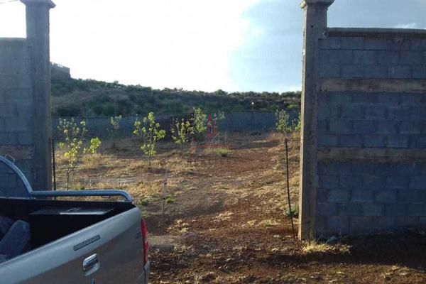 Foto de rancho en venta en  , hidalgo del parral centro, hidalgo del parral, chihuahua, 5317726 No. 03