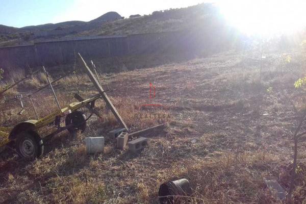Foto de rancho en venta en  , hidalgo del parral centro, hidalgo del parral, chihuahua, 5317726 No. 04