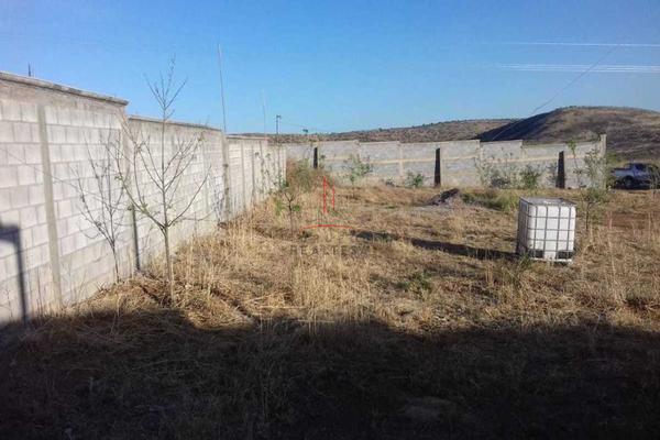 Foto de rancho en venta en  , hidalgo del parral centro, hidalgo del parral, chihuahua, 5317726 No. 06