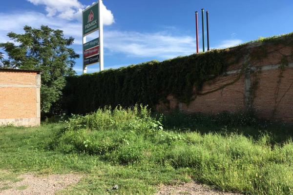Foto de terreno habitacional en venta en  , hidalgo, durango, durango, 5800299 No. 04
