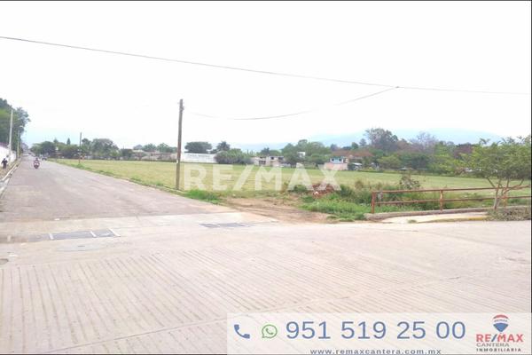 Foto de terreno habitacional en venta en hidalgo , el retiro 6ta etapa, santa maría del tule, oaxaca, 5966011 No. 05