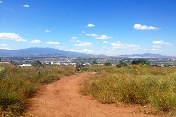 Foto de terreno habitacional en venta en hidalgo , san jose el verde centro, el salto, jalisco, 3064806 No. 02