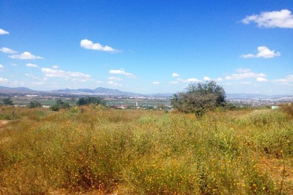 Foto de terreno habitacional en venta en hidalgo , san jose el verde centro, el salto, jalisco, 3064806 No. 04