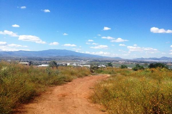 Foto de terreno habitacional en venta en hidalgo , san jose el verde centro, el salto, jalisco, 3064806 No. 09