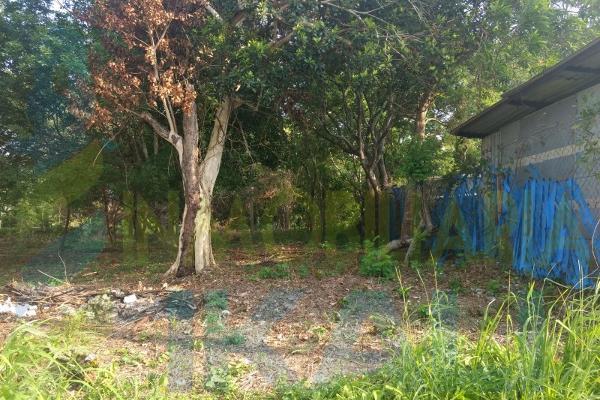 Foto de terreno habitacional en venta en  , higueral, tuxpan, veracruz de ignacio de la llave, 7535224 No. 08