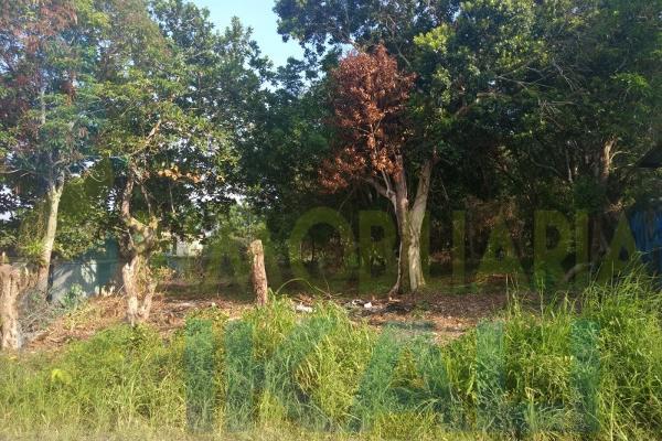 Foto de terreno habitacional en venta en  , higueral, tuxpan, veracruz de ignacio de la llave, 7535224 No. 10