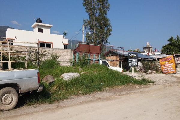 Foto de terreno habitacional en venta en honduras lote 7 manzana xvi , la sierrita, chilpancingo de los bravo, guerrero, 8320013 No. 05