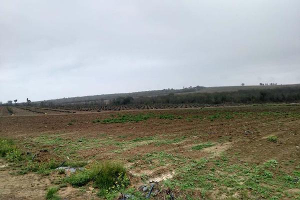 Foto de rancho en venta en  , hualahuises centro, hualahuises, nuevo león, 18895585 No. 06