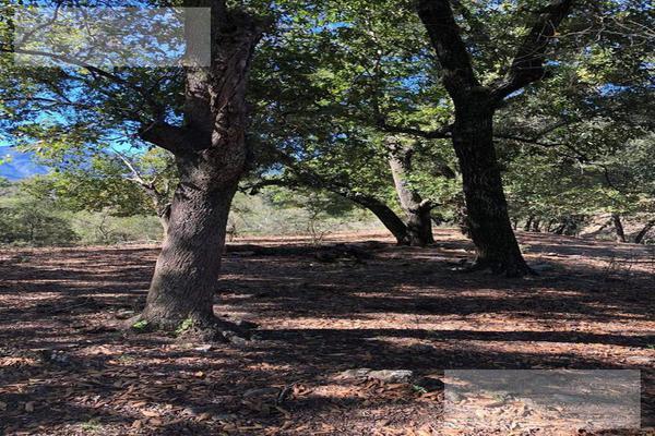 Foto de terreno habitacional en venta en  , hualahuises centro, hualahuises, nuevo león, 0 No. 16