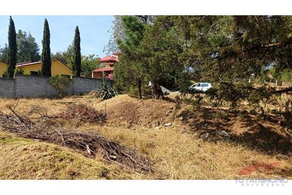 Foto de terreno habitacional en venta en  , huasca de ocampo centro, huasca de ocampo, hidalgo, 7128468 No. 04