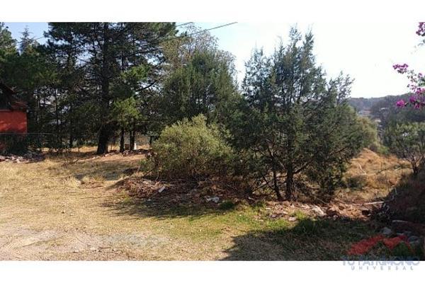 Foto de terreno habitacional en venta en  , huasca de ocampo centro, huasca de ocampo, hidalgo, 7128468 No. 06