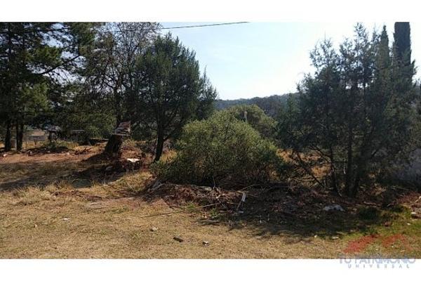 Foto de terreno habitacional en venta en  , huasca de ocampo centro, huasca de ocampo, hidalgo, 7128468 No. 07