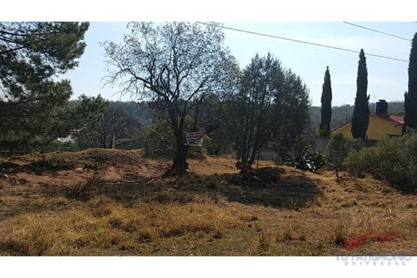 Foto de terreno habitacional en venta en  , huasca de ocampo centro, huasca de ocampo, hidalgo, 7128468 No. 08