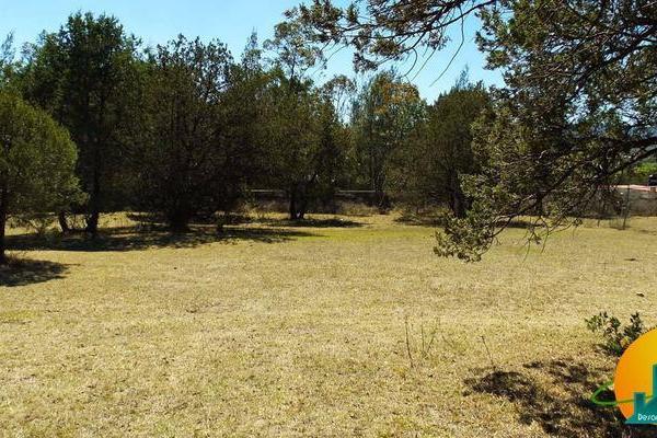 Foto de terreno habitacional en venta en  , huasca de ocampo centro, huasca de ocampo, hidalgo, 8064005 No. 03