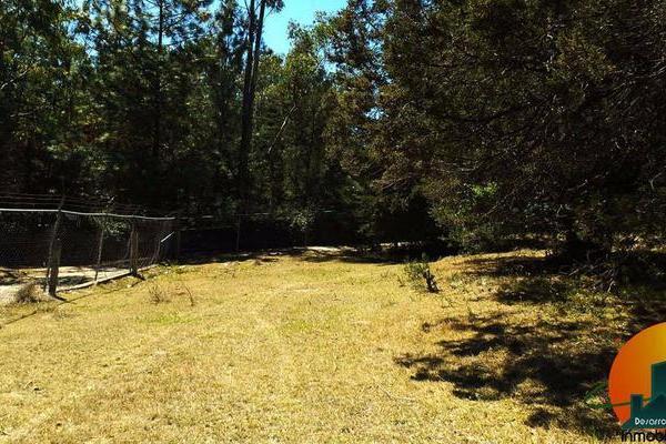Foto de terreno habitacional en venta en  , huasca de ocampo centro, huasca de ocampo, hidalgo, 8064005 No. 04