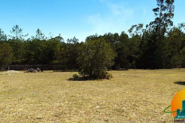 Foto de terreno habitacional en venta en  , huasca de ocampo centro, huasca de ocampo, hidalgo, 8064005 No. 05