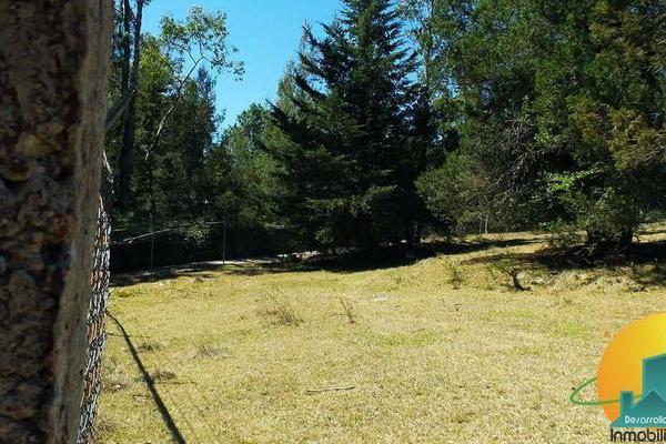 Foto de terreno habitacional en venta en  , huasca de ocampo centro, huasca de ocampo, hidalgo, 8064005 No. 07