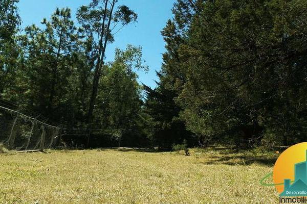 Foto de terreno habitacional en venta en  , huasca de ocampo centro, huasca de ocampo, hidalgo, 8064005 No. 08