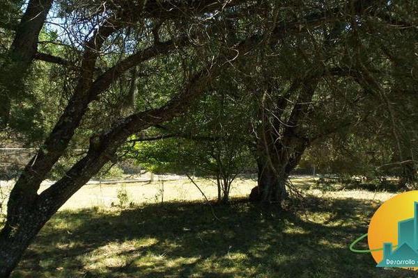 Foto de terreno habitacional en venta en  , huasca de ocampo centro, huasca de ocampo, hidalgo, 8064005 No. 10