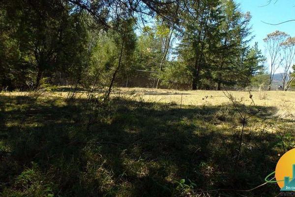 Foto de terreno habitacional en venta en  , huasca de ocampo centro, huasca de ocampo, hidalgo, 8064005 No. 12