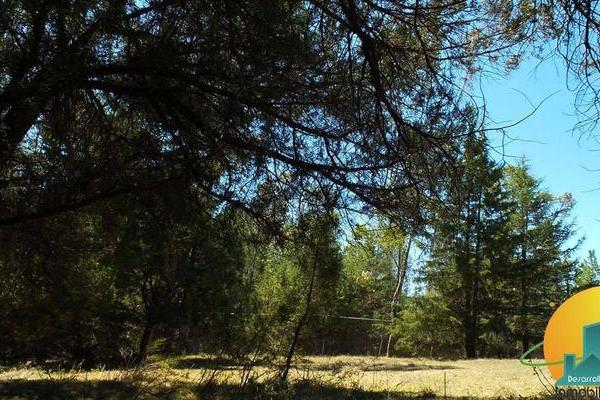 Foto de terreno habitacional en venta en  , huasca de ocampo centro, huasca de ocampo, hidalgo, 8064005 No. 13
