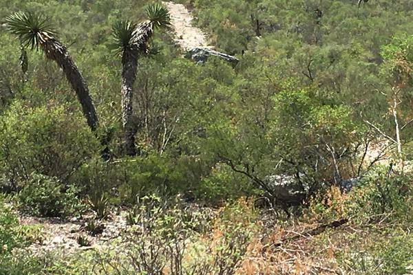 Foto de terreno habitacional en venta en  , huasteca del valle i, santa catarina, nuevo león, 8718062 No. 05