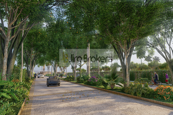 Foto de terreno habitacional en venta en huayacan , supermanzana 50, benito juárez, quintana roo, 0 No. 11