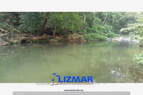Foto de terreno comercial en venta en hueyapan de ocampo 0, hueyapan de ocampo, hueyapan de ocampo, veracruz de ignacio de la llave, 6132793 No. 06