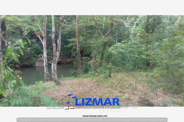 Foto de terreno comercial en venta en hueyapan de ocampo 0, hueyapan de ocampo, hueyapan de ocampo, veracruz de ignacio de la llave, 6132793 No. 07