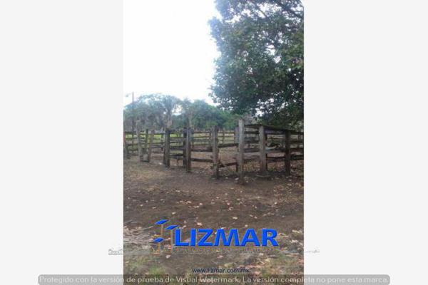 Foto de terreno comercial en venta en hueyapan de ocampo 0, hueyapan de ocampo, hueyapan de ocampo, veracruz de ignacio de la llave, 6132793 No. 08