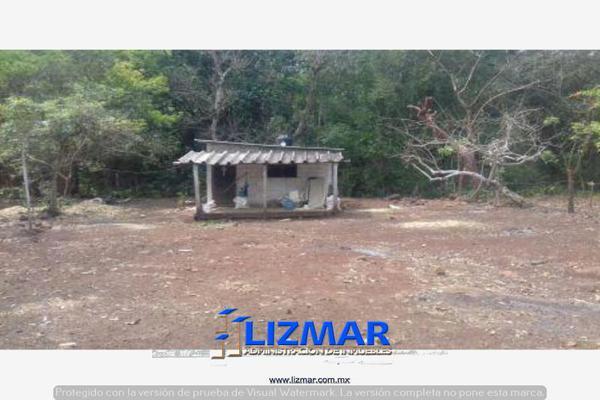 Foto de terreno comercial en venta en hueyapan de ocampo 0, hueyapan de ocampo, hueyapan de ocampo, veracruz de ignacio de la llave, 6132793 No. 09