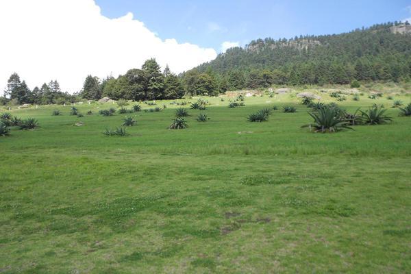 Foto de terreno habitacional en venta en  , huixquilucan de degollado centro, huixquilucan, méxico, 8049166 No. 01