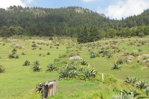 Foto de terreno habitacional en venta en  , huixquilucan de degollado centro, huixquilucan, méxico, 8049166 No. 17