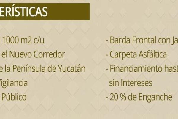Foto de terreno comercial en venta en  , hunucmá, hunucmá, yucatán, 5400077 No. 03