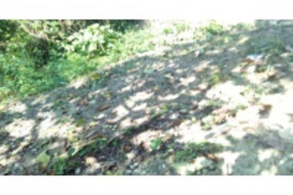 Foto de terreno habitacional en venta en ignacio allende , granjas de alto lucero, tuxpan, veracruz de ignacio de la llave, 5966462 No. 06